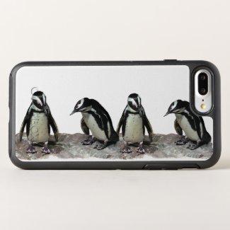 Black and White Penguin Birds