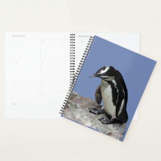 Black and White Penguin Birds Planner