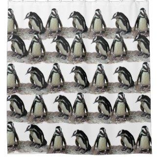 Black and White Penguin Birds Shower Curtain