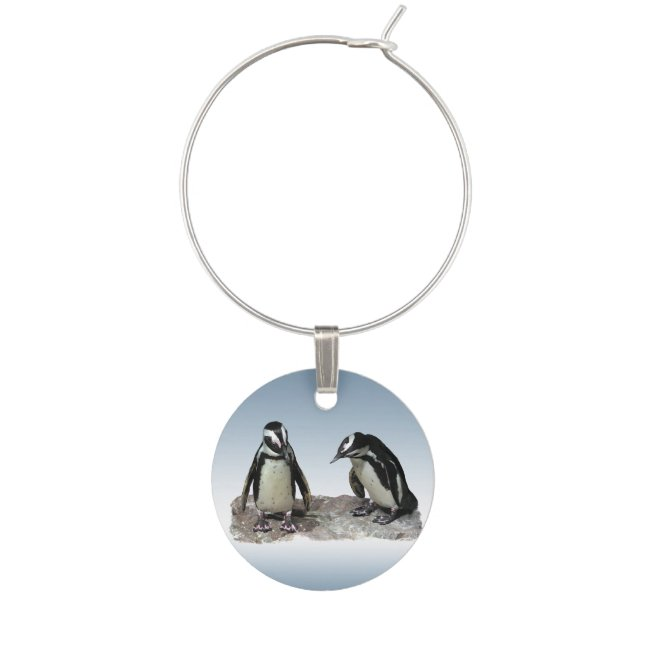 Black and White Penguin Birds Wine Charm