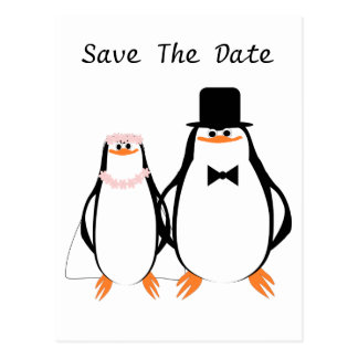 Black And White Penguins Wedding Save The Date Postcard