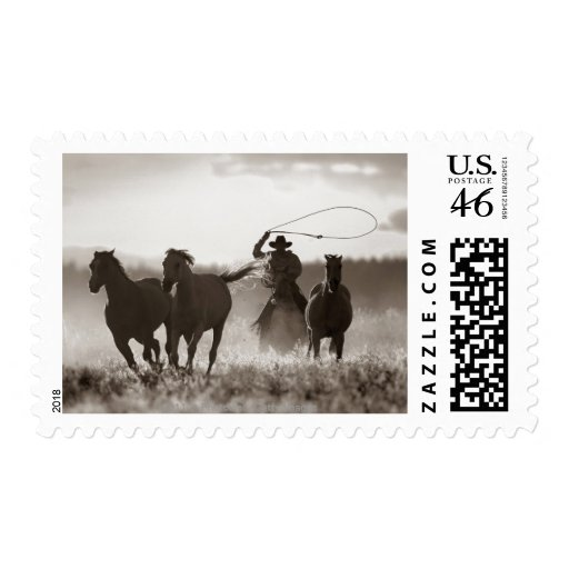 Black and White photo of a Cowboy Lassoing Horses Postage Stamp