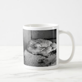 Black and white photo of a frog on a concrete sill mug