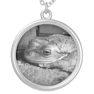Black and white photo of a frog on a concrete sill round pendant necklace