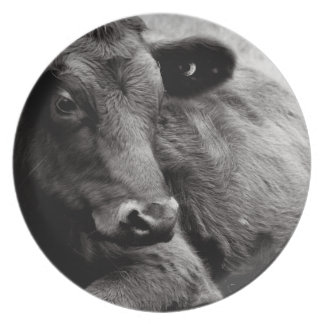 Black and White Photo of Black Angus Steer Party Plate