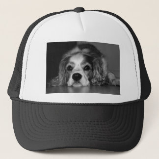 Black and white photo of dog trucker hat