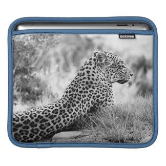 Black and White photo of Leopard looking iPad Sleeve