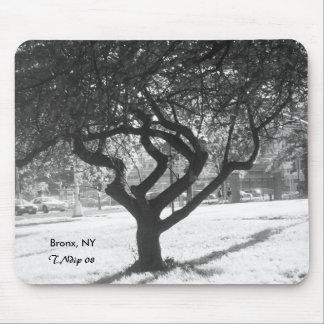 Black and White Photo: Tree in Bronx NY Mousepad