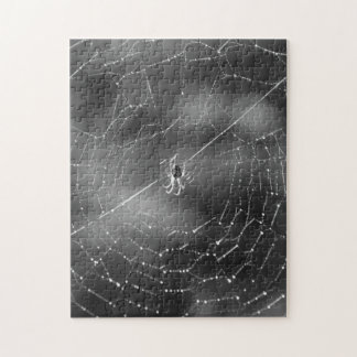 Black and white photograph of a spider and web puzzle