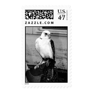 Black and white photograph of gyrfalcon stamp