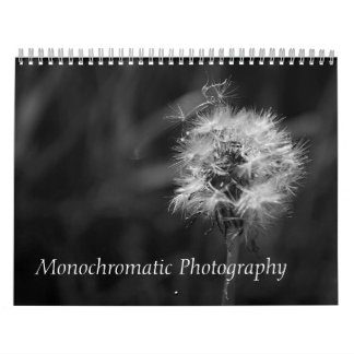 Black and White Photographs Animals Landscape Bird Calendar