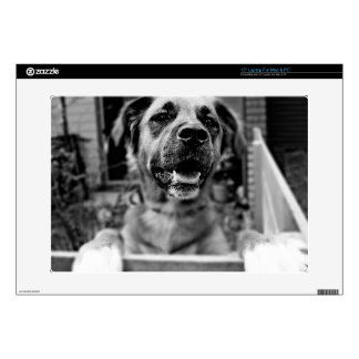 """Black and White Photography Cute Dog Decal For 15"""" Laptop"""