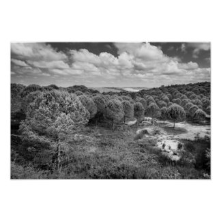 Black and white photography landscape print poster