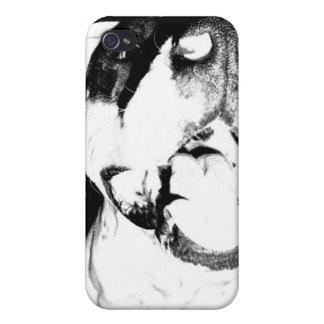 Black and White Pitbull Iphone 4 Case