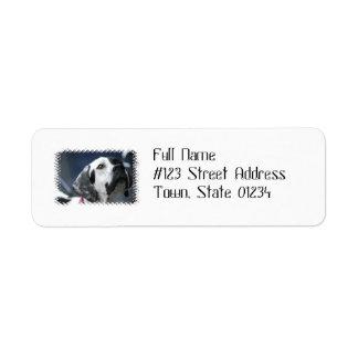 Black and White Pointer Dog Address Labels
