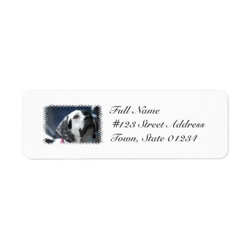 Black and White Pointer Dog Mailing Labels