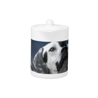 Black and White Pointer Dog Teapot