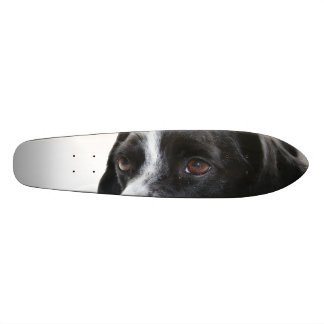 Black and White Pointers Custom Skate Board