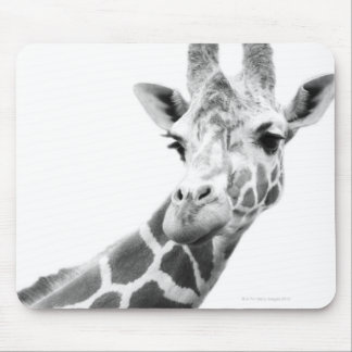 Black and white portrait of a giraffe mouse pad