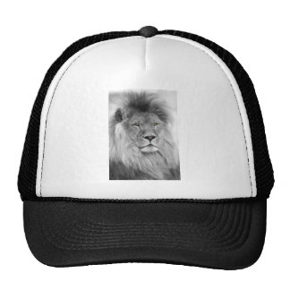Black and white portrait of lion trucker hat