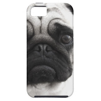 Black and White Pug iPhone 5 Cases