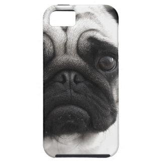 Black and White Pug iPhone SE/5/5s Case