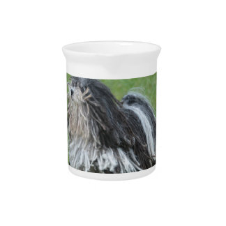 Black and White Puli Dog Drink Pitcher