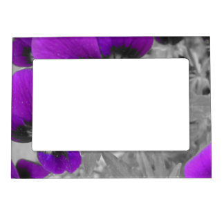 Black and White Purple Pansy Effect Magnetic Picture Frame