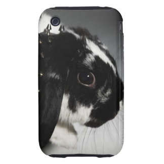 Black and white rabbit with studded collar tough iPhone 3 case