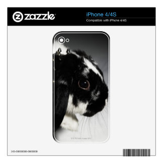 Black and white rabbit with studded collar iPhone 4S decals