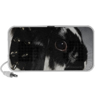 Black and white rabbit with studded collar portable speaker