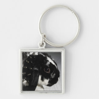 Black and white rabbit with studded collar Silver-Colored square keychain