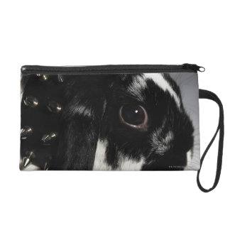 Black and white rabbit with studded collar wristlet purse