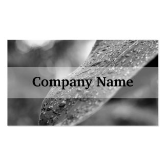 Black and White Raindrops On A Leaf Business Card