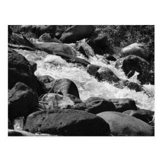 Black and White Rapids Postcard