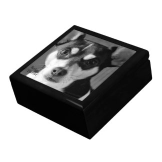 Black and White Rat Terrier Keepsake Box