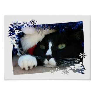 Black and White resigned cat santa hat blue tinsel Posters