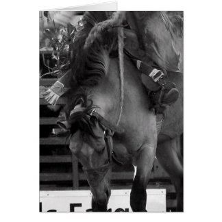 Black and White Rodeo Bronco Greeting Card