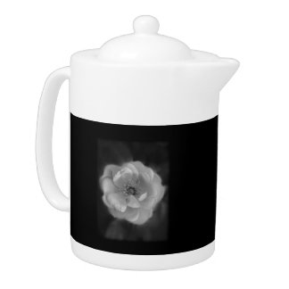 Black and White Rose.