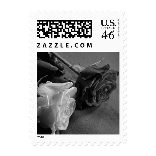 Black and White Rose, B&W Photo Postage Stamps