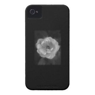 Black and White Rose. Blackberry Bold Cover