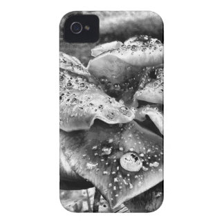 Black and White Rose iPhone Case iPhone 4 Case-Mate Case