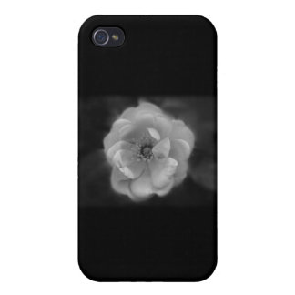 Black and White Rose. Cover For iPhone 4