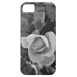 Black and White Rose iPhone SE/5/5s Case