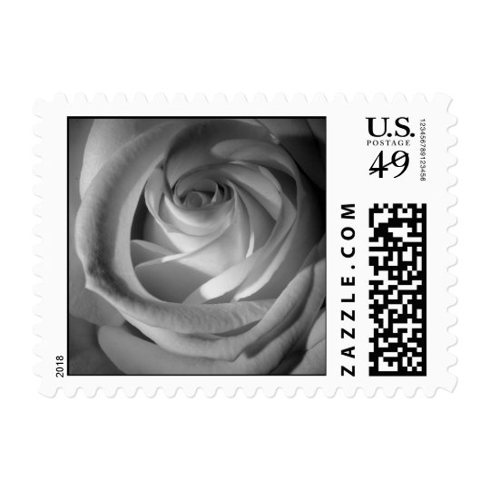 Black and white Rose Postage