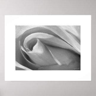 Black and White Rose Poster Poster Print
