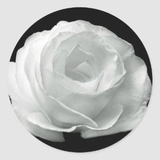Black And White Rose Stickers