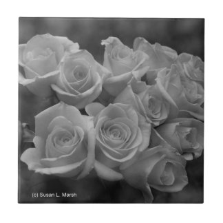Black and white roses against spotted background ceramic tile