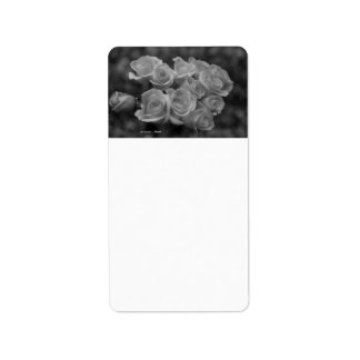 Black and white roses against spotted background address label