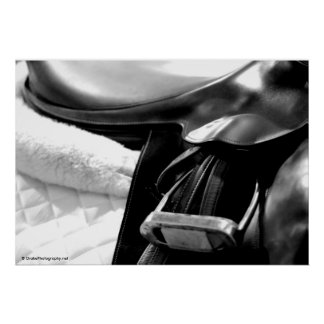 Black and White Saddle Poster